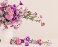Цветки в керамических вазах Стоковая Фотография RF