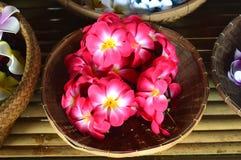 Цветки в корзине стоковое изображение rf