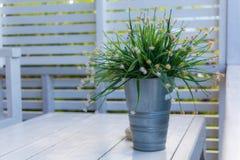 Цветки в клети Стоковая Фотография RF