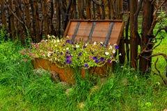 Цветки в первоначально кровати Стоковые Изображения RF