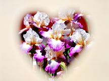 Цветки в сердце Стоковая Фотография RF