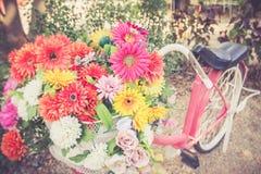 Цветки в смертной казни через повешение корзины на handlebars велосипеда Стоковое Изображение