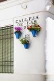 Цветки в цветочном горшке на белых стенах на известной улице цветка Стоковое Фото