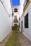 Цветки в цветочном горшке на белых стенах на известной улице цветка Стоковые Изображения RF