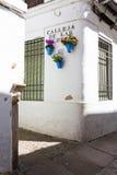 Цветки в цветочном горшке на белых стенах на известной улице цветка Стоковая Фотография