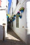 Цветки в цветочном горшке на белых стенах на известной улице цветка Стоковые Фото