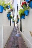 Цветки в цветочном горшке на белых стенах на известной улице цветка Стоковое фото RF