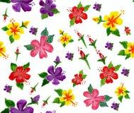 Цветки гибискуса акварели Стоковая Фотография