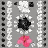 Цветки гибискуса вектора элегантные декоративные Стоковая Фотография RF