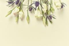 Цветки горечавки прерии и падуба моря на предпосылке белой бумаги для приглашений или поздравительных открыток Стоковое Изображение