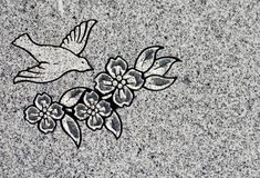 цветки гравировки птицы Стоковое Фото