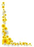 цветки граници Стоковые Фото