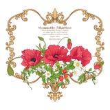Цветки лета: мак, daffodil, ветреница, фиолет, в ботаническом s Стоковые Изображения