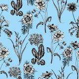 Цветки лета поля Безшовная предпосылка ботаническую Ткань, обои кровопролитное флористическая текстура картины иллюстрация штока
