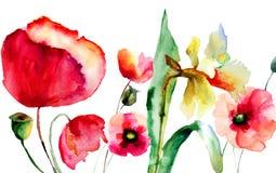 Цветки лета Стоковое Фото