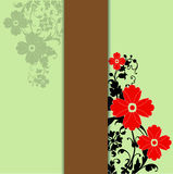 цветки лета Стоковые Изображения RF