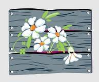 цветки загородки Иллюстрация вектора