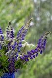 Цветки за ненастным окном Стоковая Фотография RF
