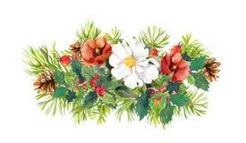 Цветки зимы, ель, омела рождества акварель Стоковое фото RF