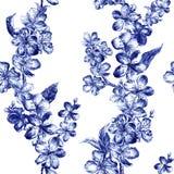 Цветки иллюстрации карандаша угля руки вычерченные голубых цветений pulm в винтажном стиле Красивое элегантное безшовное стоковые фотографии rf