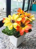 Цветки используемые для того чтобы украсить стоковая фотография rf