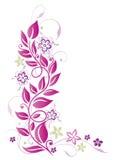 Цветки, листья, розовые Стоковая Фотография RF