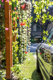 Цветки и автомобиль в bokeh Стоковое Изображение RF