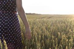 Цветки и ладонь женщины в поле Стоковые Изображения
