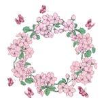 Цветки и бабочки яблока поздравительной открытки Стоковые Фото
