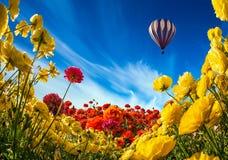 Цветки и воздушный шар Neverland коллаж Стоковая Фотография