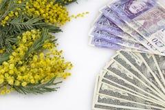 Цветки и деньги Стоковые Фото