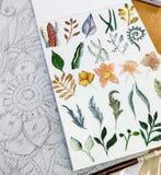 Цветки и заводы акварели Стоковая Фотография RF