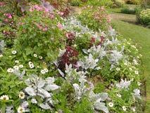Цветки и заводы сада парка Стоковое фото RF