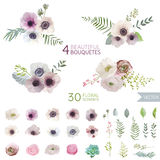 Цветки и листья