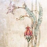Цветки и листья i Стоковое Изображение