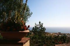 Цветки и море бака Стоковое фото RF