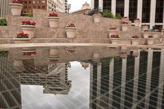 Цветки и отражение финансового района в горшке Стоковые Изображения