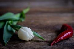 Цветки и перец Стоковое Изображение