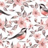 Цветки и птицы весны картина безшовная иллюстрация штока