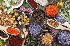 Цветки и травы для нетрадиционной медицины, предпосылки здравоохранения стоковые изображения rf