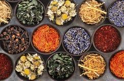 Цветки и травы для нетрадиционной медицины, предпосылки здравоохранения стоковые фотографии rf