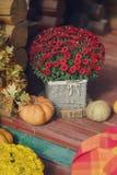 Цветки и тыква Стоковое Изображение RF