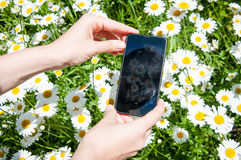 Цветки и умные телефоны стоковое фото rf