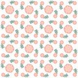 Цветки и цвета цифров Стоковая Фотография RF