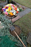 Цветки и цветения и лопаткоулавливатель с почвой для захоронения Стоковые Изображения RF