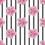 Цветки и черные нашивки, имитация акварели, безшовная Стоковая Фотография