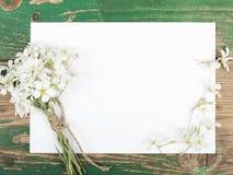 Цветки и чистый лист бумаги Стоковые Изображения RF