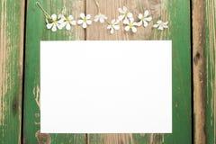 Цветки и чистый лист бумаги Стоковое Фото