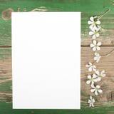 Цветки и чистый лист бумаги Стоковые Изображения
