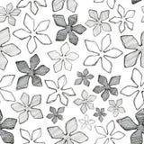 Цветки картины выравниваются на белой предпосылке иллюстрация штока
